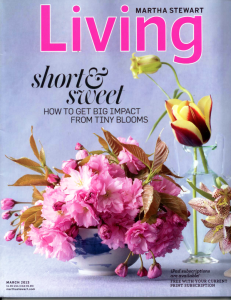 New York hypnotist Jeffrey Rose in Martha Stewart Living
