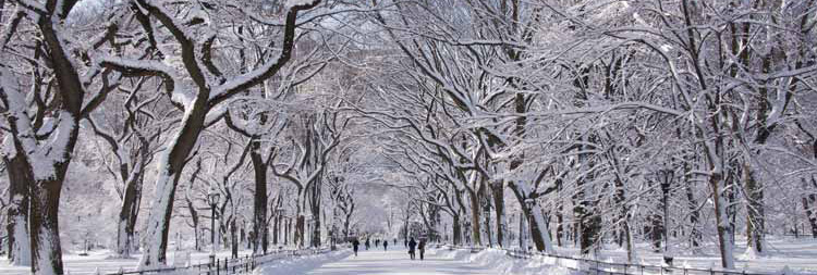 New York City Hypnotist Jeffrey Rose specilizes in